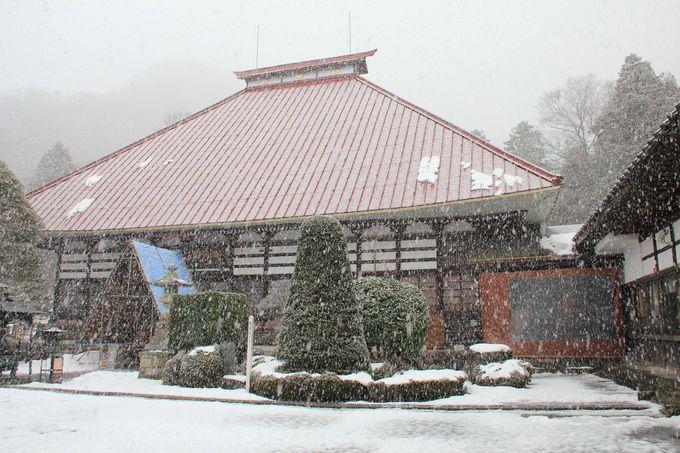 北斎直筆の天井絵と小林一茶ゆかりの寺院「岩松院」