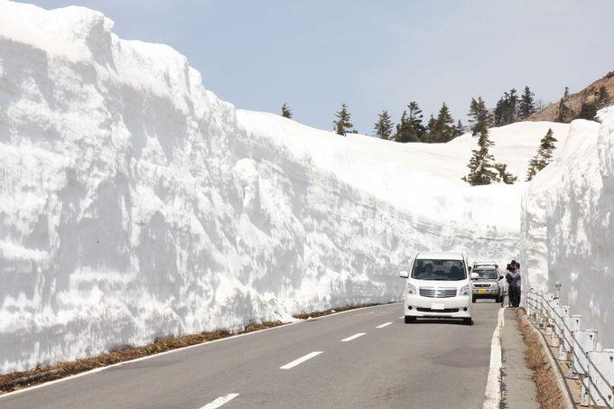 雪の回廊を行く絶景ドライブ