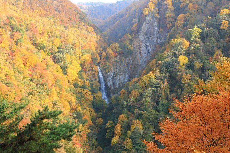 紅葉ドライブには長野県志賀高原がお勧め!国道最高地点からは富士山も!