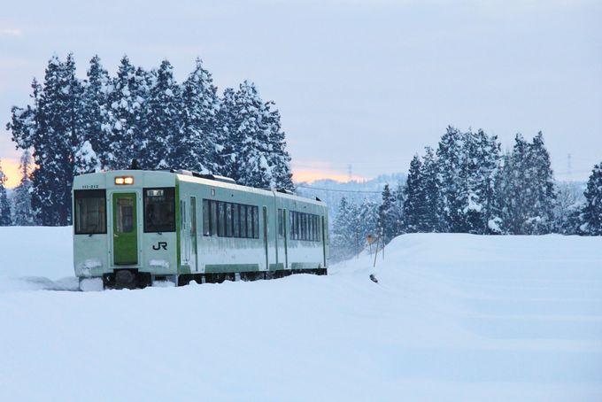 雪原の中を進むディーゼルカー