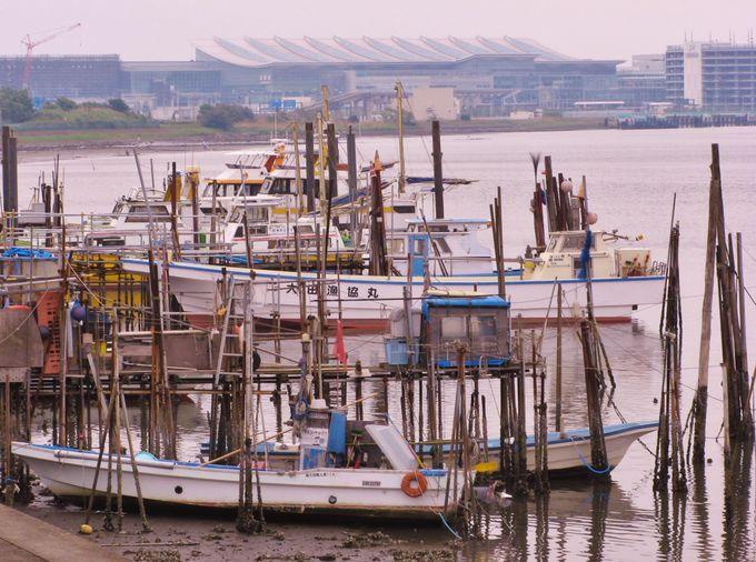 大空港に隣接する小さな漁師町羽田界隈で、潮風を感じながらの散策