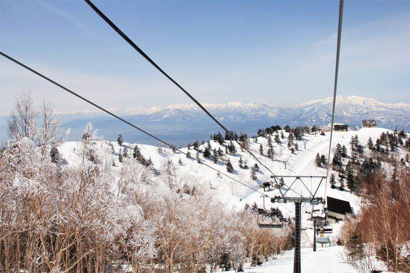 標高1930mのスカイランドエリア、樹氷林と上質な雪が魅力