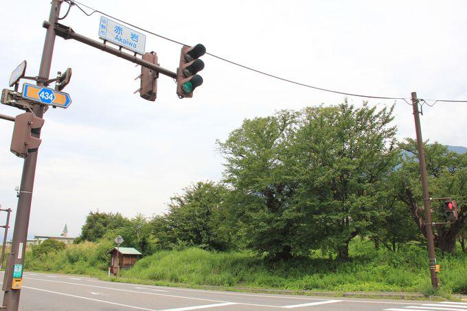 沿線最大の見どころ夜間瀬川鉄橋(四ヶ郷駅〜赤岩駅)