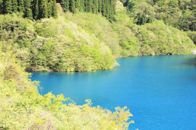 青い湖は長野県にもあった!ブルーの水を湛える豊丘ダム