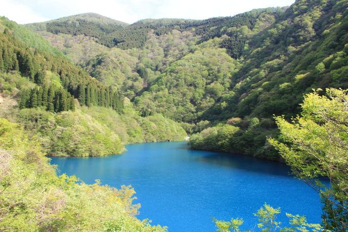 周囲の木々と湖水のコントラストも美しい