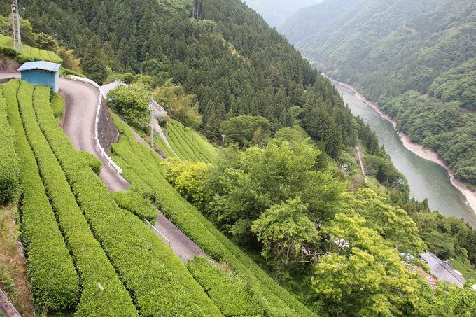 深い谷間に沿って走る飯田線。沿線はまさに秘境です。