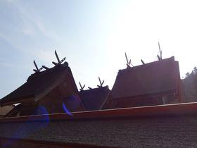 縁結びだけじゃない!古代出雲の真の姿を荒神谷と加茂岩倉遺跡に垣間見る!