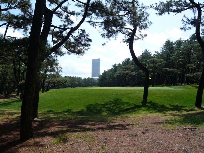 個性異なる・・二つのリゾートゴルフ!それぞれの魅力とは?
