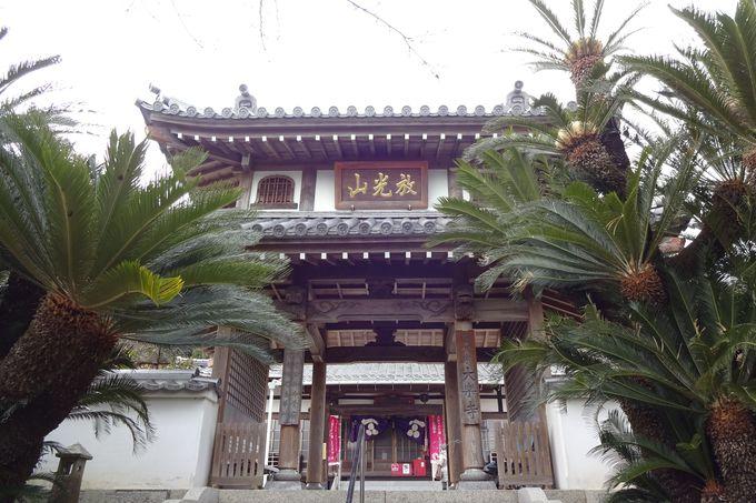 男爵楫取夫妻の眠る大楽寺へ、有名な女優さんのお墓も・・