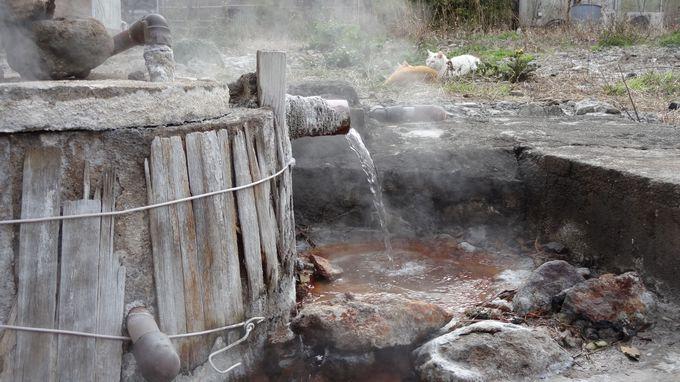 鉄輪温泉のジモ泉の1つ〜豊富な湯量はさすが!!