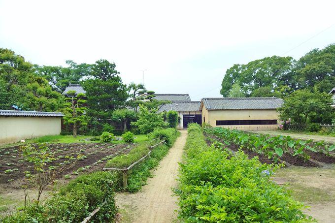 菅茶山の故郷であり生涯を終えた歴史ある町・神辺