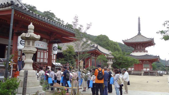 美しい多宝塔や金堂のある浄土寺からスタート!