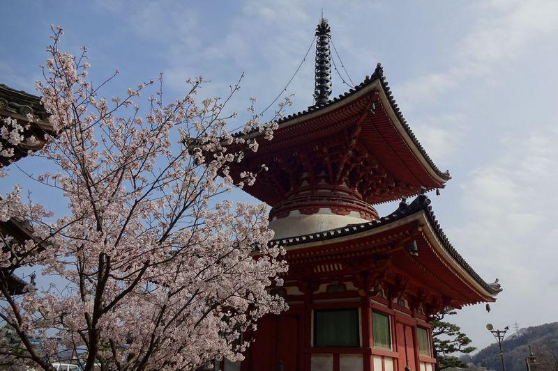 文化財の宝庫・尾道浄土寺で、多くの国宝や美しい景色を堪能
