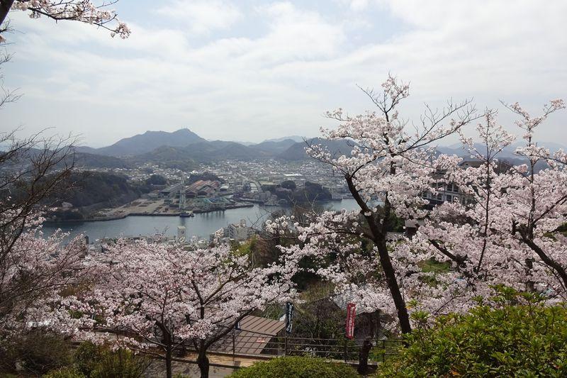尾道・千光寺散策〜桜色に染まる千光寺山でほんわか春気分