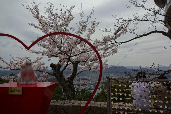 「恋人の聖地」尾道千光寺公園で・・桜色?!