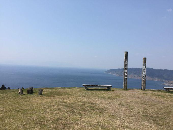 野生馬が暮らす「都井岬」へ心癒される旅を