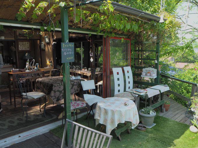 尾道商人がお茶を楽しんだ茶室は、優雅なオープンカフェへ