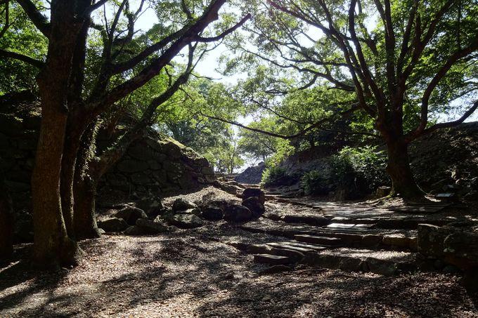 置き去りの石垣〜忘れ去られた太閤の夢の城跡