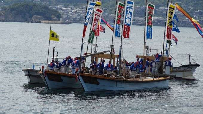 観光鯛網のクライマックスは、観覧船から親船へ