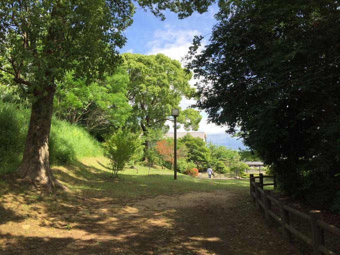 横溝正史の散歩道を歩いてみよう