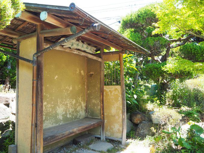 高級料亭の面影を残す庭や設えも見どころのひとつ
