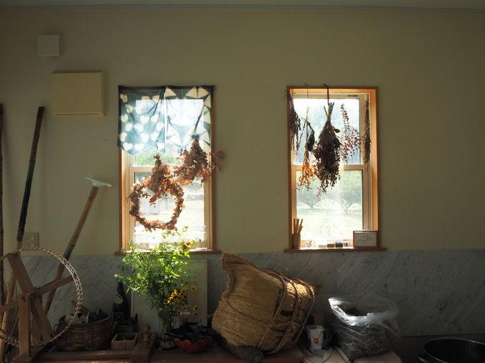 季節の色に染め上げる〜絹か木綿か麻か?布選びもワクワク