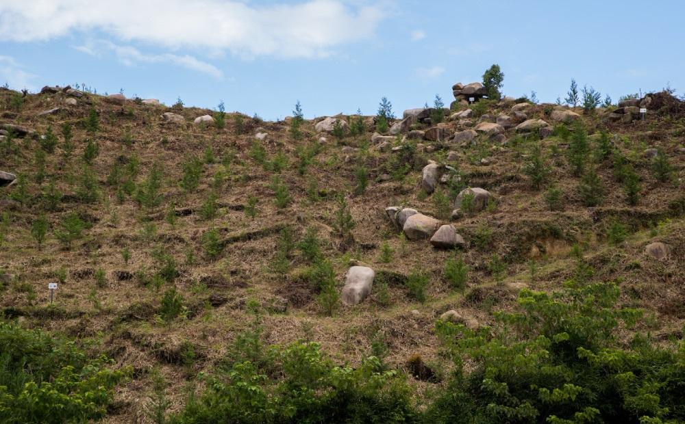 驚きの「古墳の丘」、山肌に広がる古墳群に興奮!