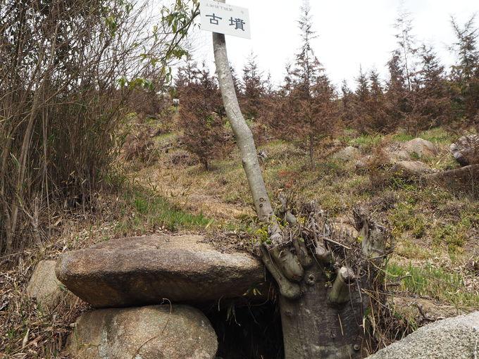 古墳の丘(上御領下組古墳群)から神辺平野を望む