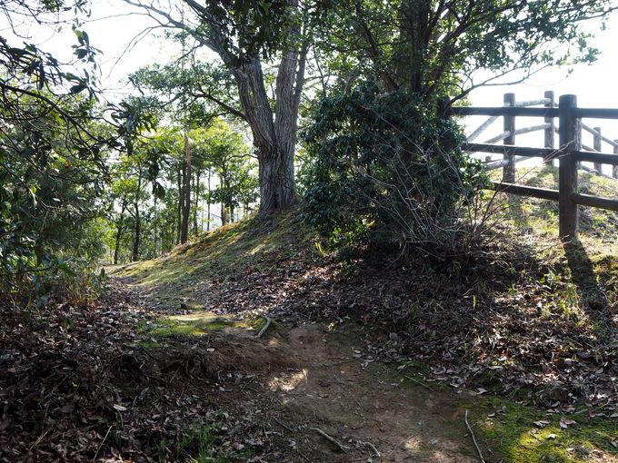 古代出雲の王が眠る史跡公園「出雲弥生の森」へ