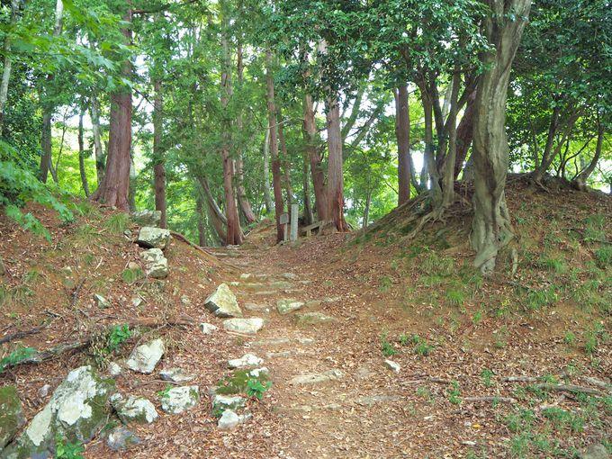 大堀切跡や京極丸から浅井長政最期の地へ