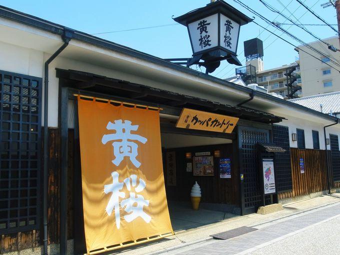 3.伏見・酒蔵巡り