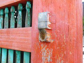 世界遺産「清水寺」の七不思議を巡る!最大の謎はやっぱりこれ!
