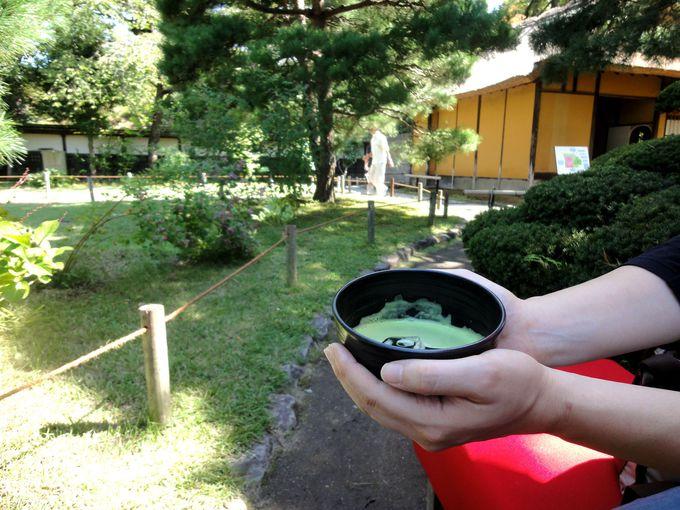 茶室「麟閣」でお茶を堪能