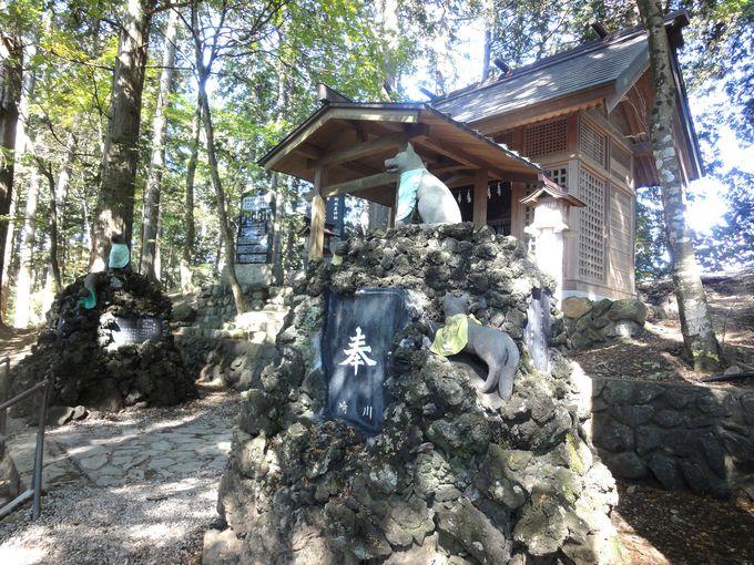 三峯神社のお使い神「お犬さま」にもご挨拶をしよう