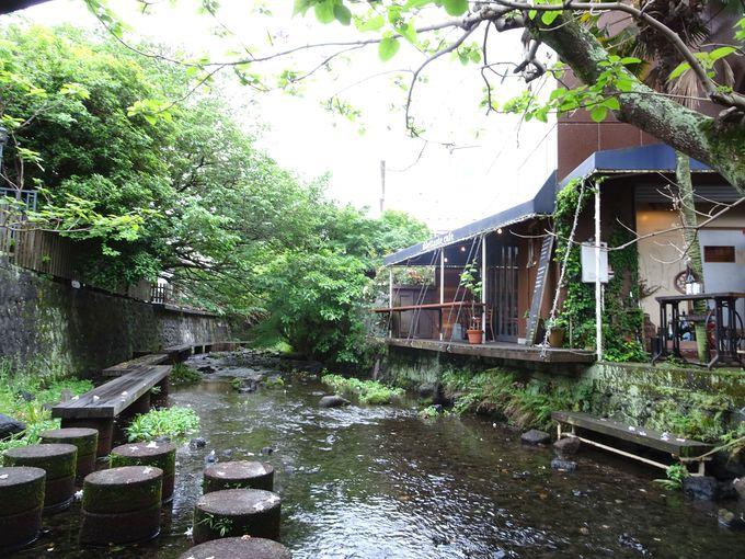 撮影を終えたら、源兵衛川沿いにあるカフェで休憩するのもオススメ