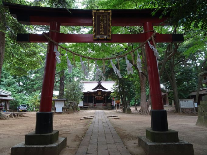 氷川神社だけじゃない!武蔵国一ノ宮の「氷川女體(女体)神社」