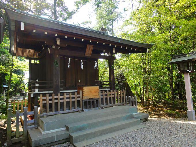 末社「松尾神社」に祀られている「大山咋命」は江戸時代・徳川家の氏神といわれている!