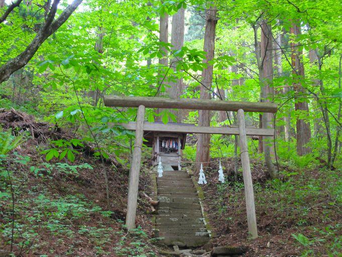 【9】戸隠神社(長野)