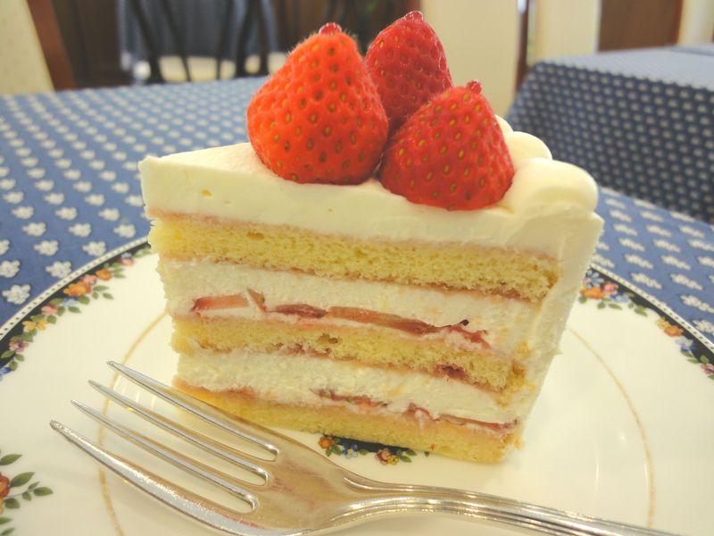 巣鴨お勧め4選!日本一のケーキ、千原jrさん愛用赤パンも!