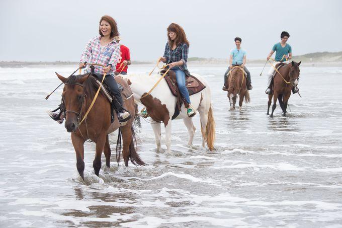 波打ち際に馬と走りたい!「九十九里浜」で乗馬体験