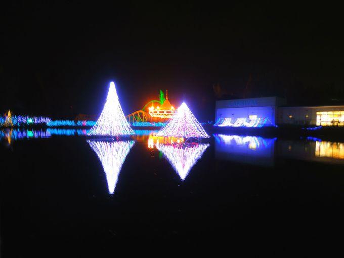 見どころその3:鯉牧場に浮かぶ「光のアクアリウムエリア」