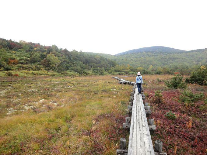吉永小百合さんになりきり、「浄土平湿原」で記念撮影!