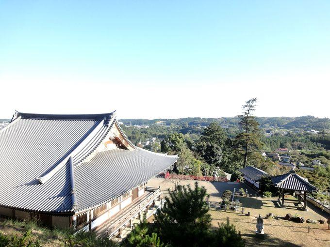 高台から眺める風景も一見の価値アリ
