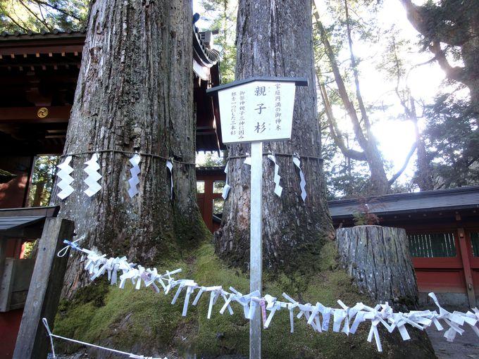 3.二荒山神社