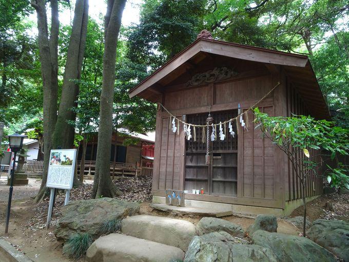 見沼の竜神さまがお祀りされている「竜神社」