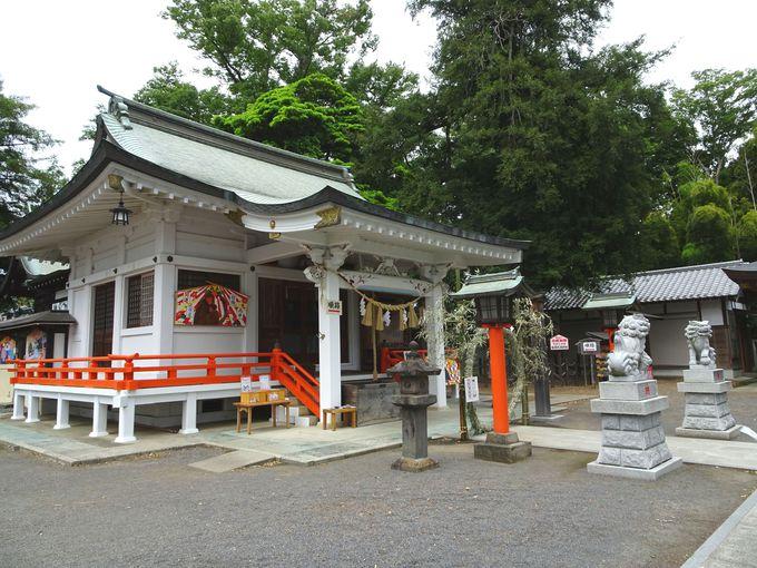 見どころ1:神社なのに…「真っ白な拝殿」がモダンでアート!?