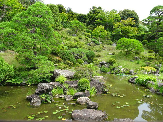 日本名園百選に選ばれている、能仁寺庭園