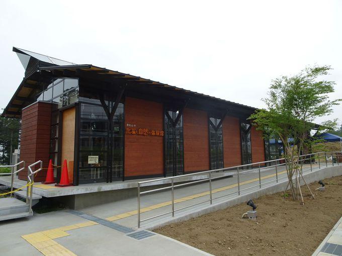 埼玉は海だった!?サメの歯などを発掘できる「東松山市化石と自然の博物館」