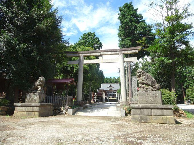 123年に創建! 1900年の古社「出雲伊波比(いずもいわい)神社」