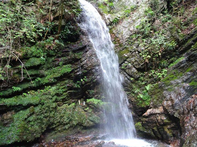 ポイント5:男滝をより近くで見て、マイナスイオンを浴びよう